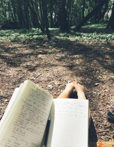 Journalling in the forest amongst the trees